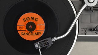 Song Sanctuary